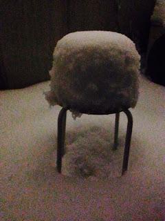 昨日から降り続いた雪