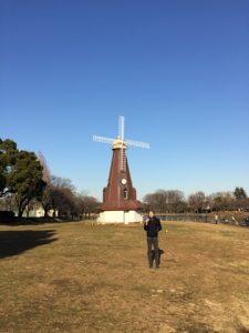 浮間公園内の風車