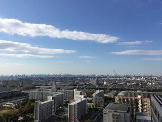 浦安から東京方面の眺め