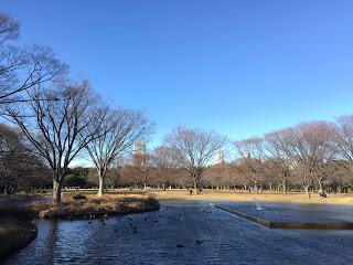 2018年の代々木公園噴水池