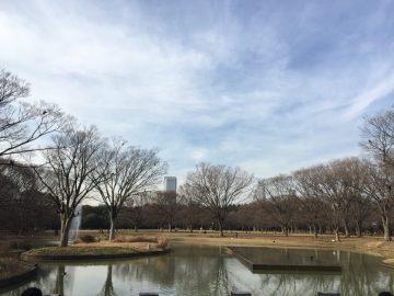 2月の代々木公園噴水前