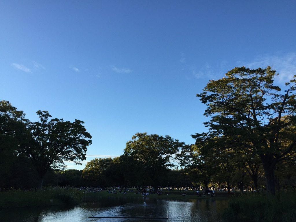 台風が過ぎた代々木公園は多くの人出でした