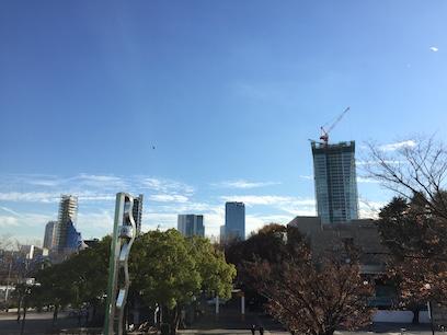 代々木公園から渋谷方面