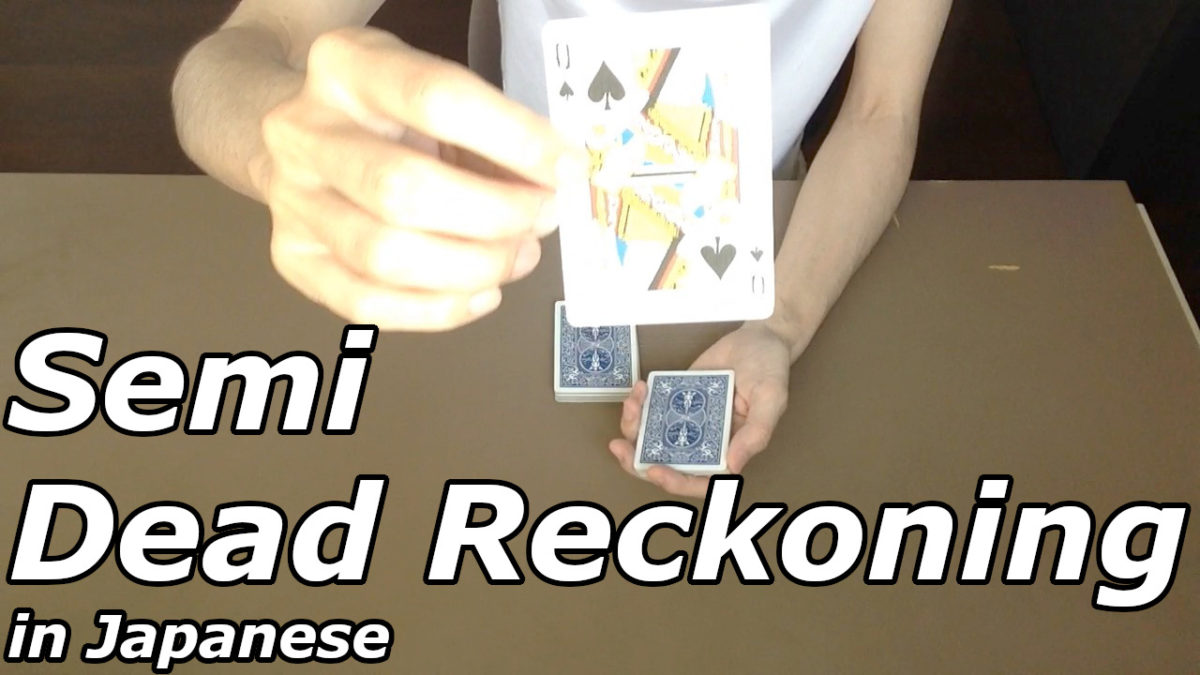 Semi-Dead-Reckoning-in-Japanese-2020-05-28