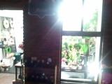 下落合の花屋さん『葉織』(haori)入り口