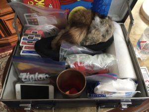 マジシャンの鞄の中身 5歳の誕生日ホームパーティーでマジシャンのマジックショー in 大田区
